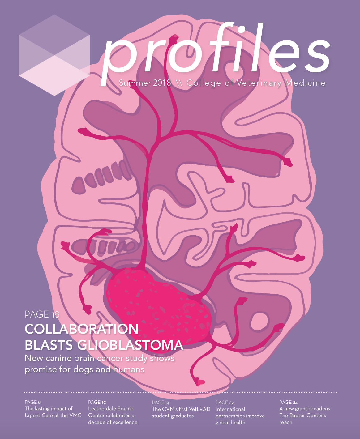 Profiles Summer 2018 cover, dog brain with glioblastoma illustration