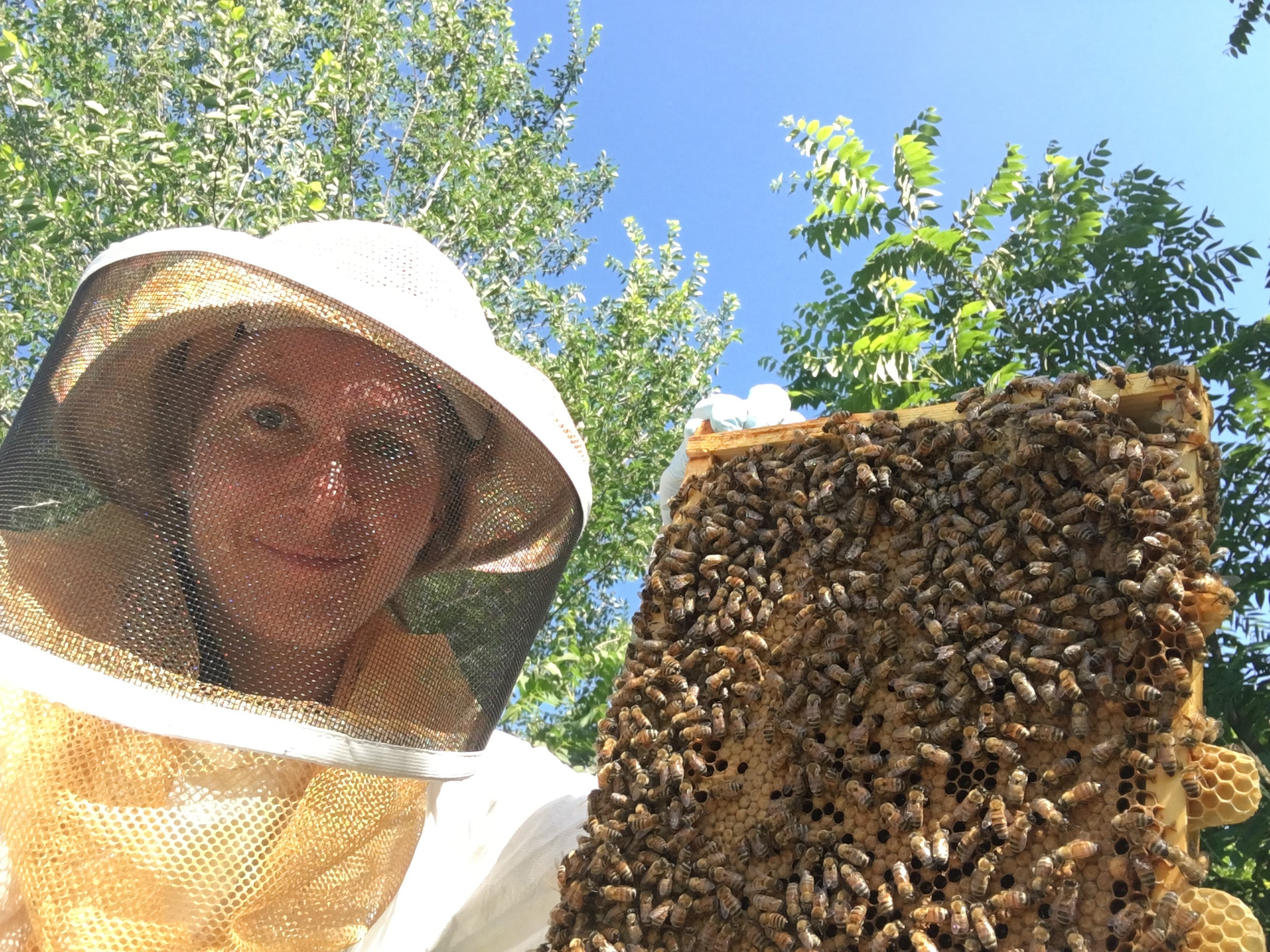 Eva Reinicke with some of her bees